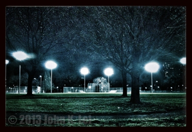 Moss Park at night