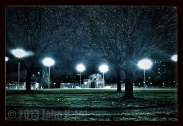 Moss Park at night